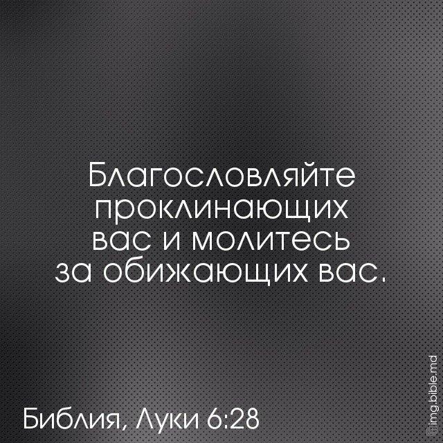 обида в сердце глупых из библии в картинках этого останется
