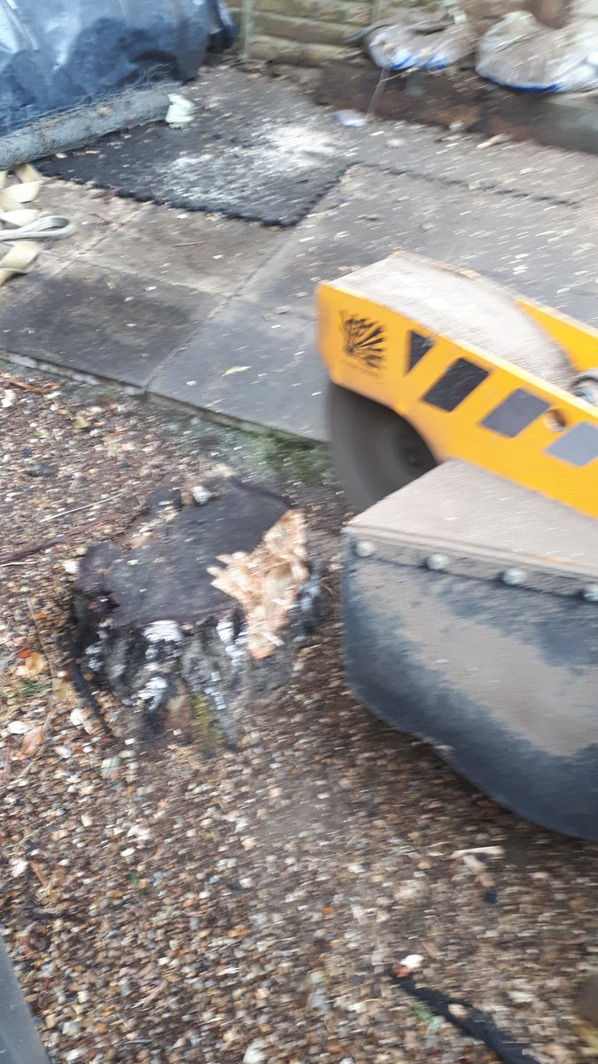 Essex tree stump grinding removing various tree stumps in Danbury, near Chelmsford, Essex. We are here to help you with …