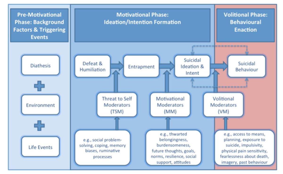 download обучение социальному проектированию материалы