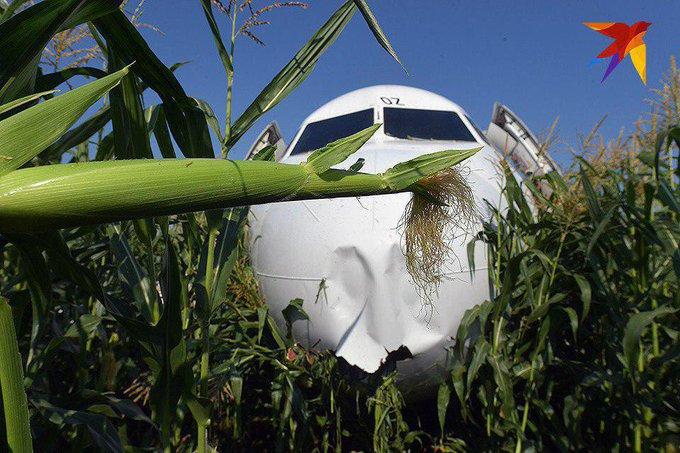 У Росії серед кукурудзяного поля екстрено сів пасажирський літак з палаючим двигуном, який летів до окупованого Криму - Цензор.НЕТ 88