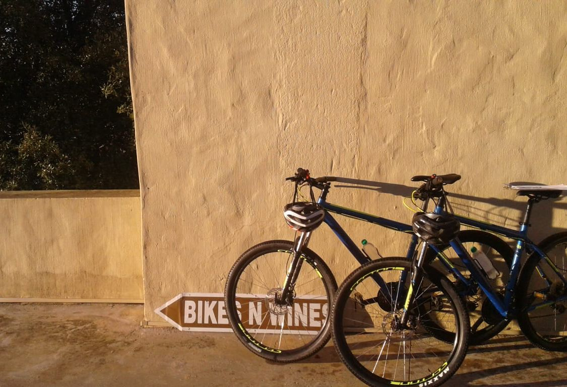 Blog Archives | Bikes 'n Wines