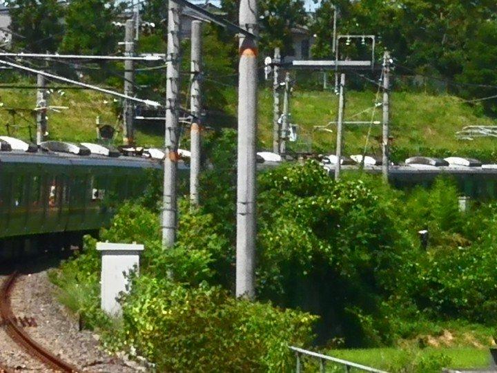 学研都市線の大住駅~松井山手駅間で人身事故が起き電車が止まっている現場の画像
