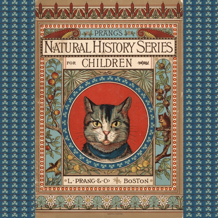 pliny natural history volume vii books 24 27 index of plants