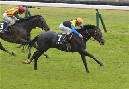 ジューンS1着後、放牧に出ていたジナンボー(牡4=堀)は、9月1日の新潟記念へ。クイーンS4着後、放牧中のウラヌスチャーム(牝4=斎藤誠)は10月6日の京都大賞典からエリザベス女王杯を目指す。僚馬でオークス6着のシャドウディーヴァは引き続き岩田康誠騎手で9月15日のローズSへ。https://t.co/QyDQBcSdL4