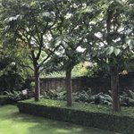 Image for the Tweet beginning: A garden where both formal