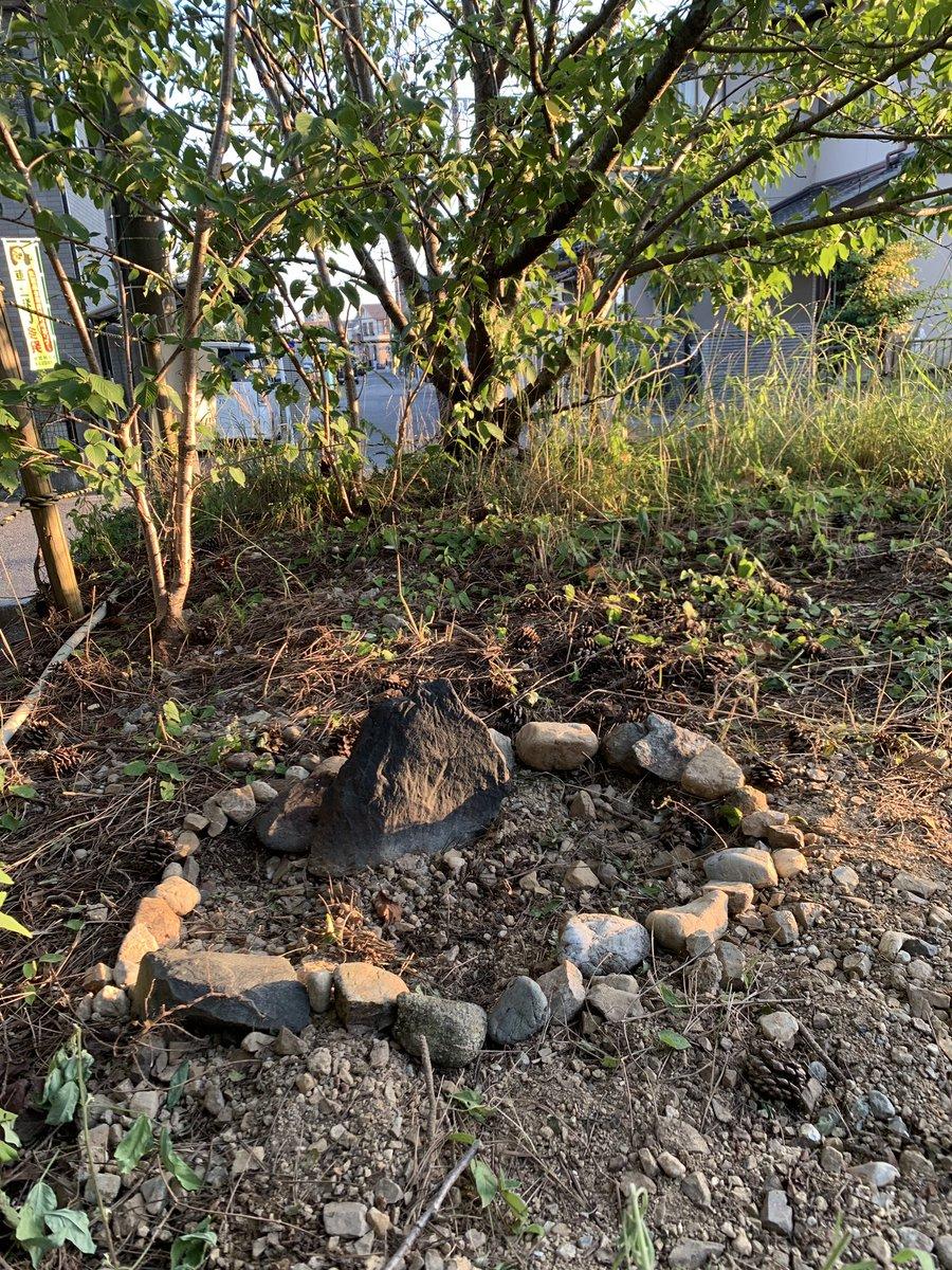 おはようございます☀たくさんイイねやコメントありがとう御座いました。せんのお墓は今迄のどのネコさん達より立派です。うちの桜の麓にあります。