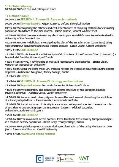 download conditionals