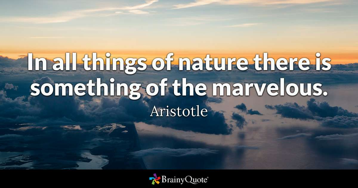 In all things of nature, there is something of the marvelous @BrainyQuote #quotestoliveby #FridayThoughts
