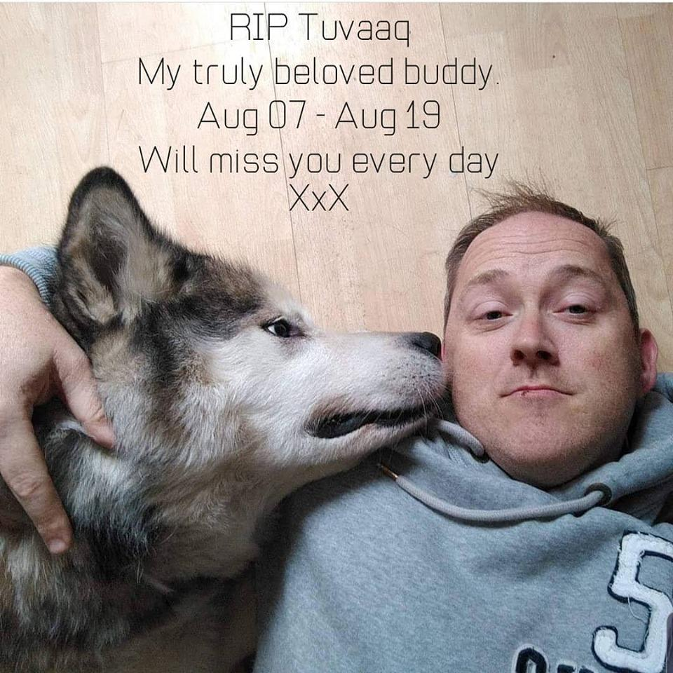 To all you dog loving folk out there. Can I get a RT and share of this please. My beloved Tuvaaq of 12 yrs was PTS today. Would love him to do the rounds on here as a show of love. @DC_ARVSgt @DogsFirearm @DC_PoliceDogs @caz_anda @thedogman_918
