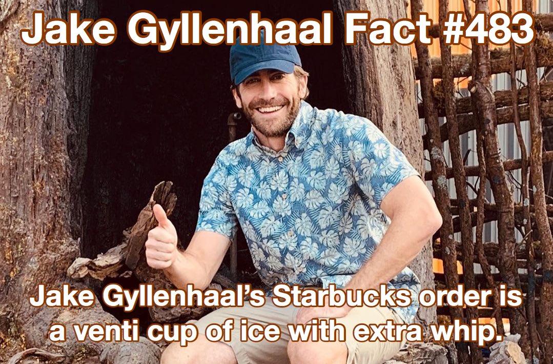 jake gyllenhaal facts (@GyllenhaalFacts) on Twitter photo 09/08/2019 18:46:08