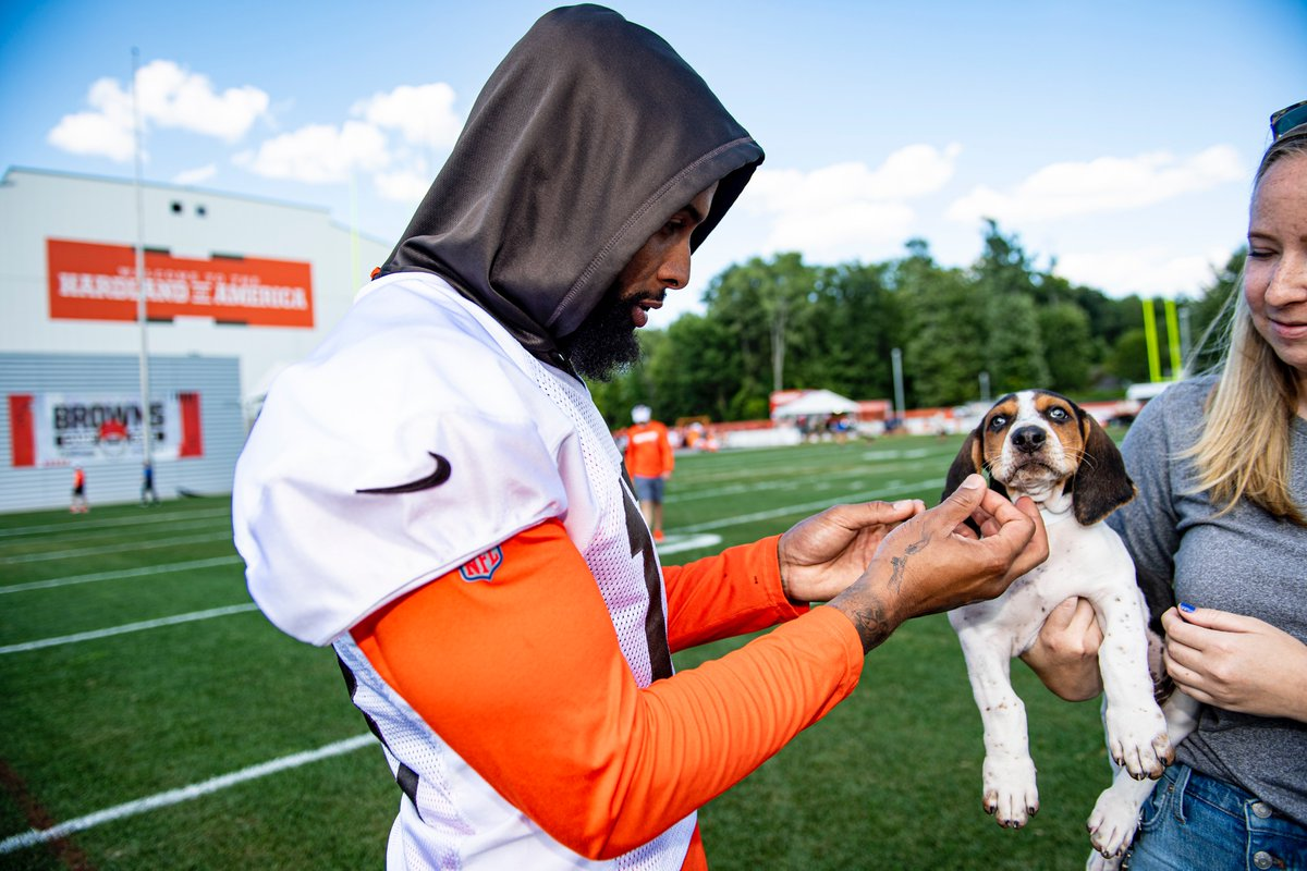 Day 12 of #BrownsCamp and the puppy #content is still flowing.