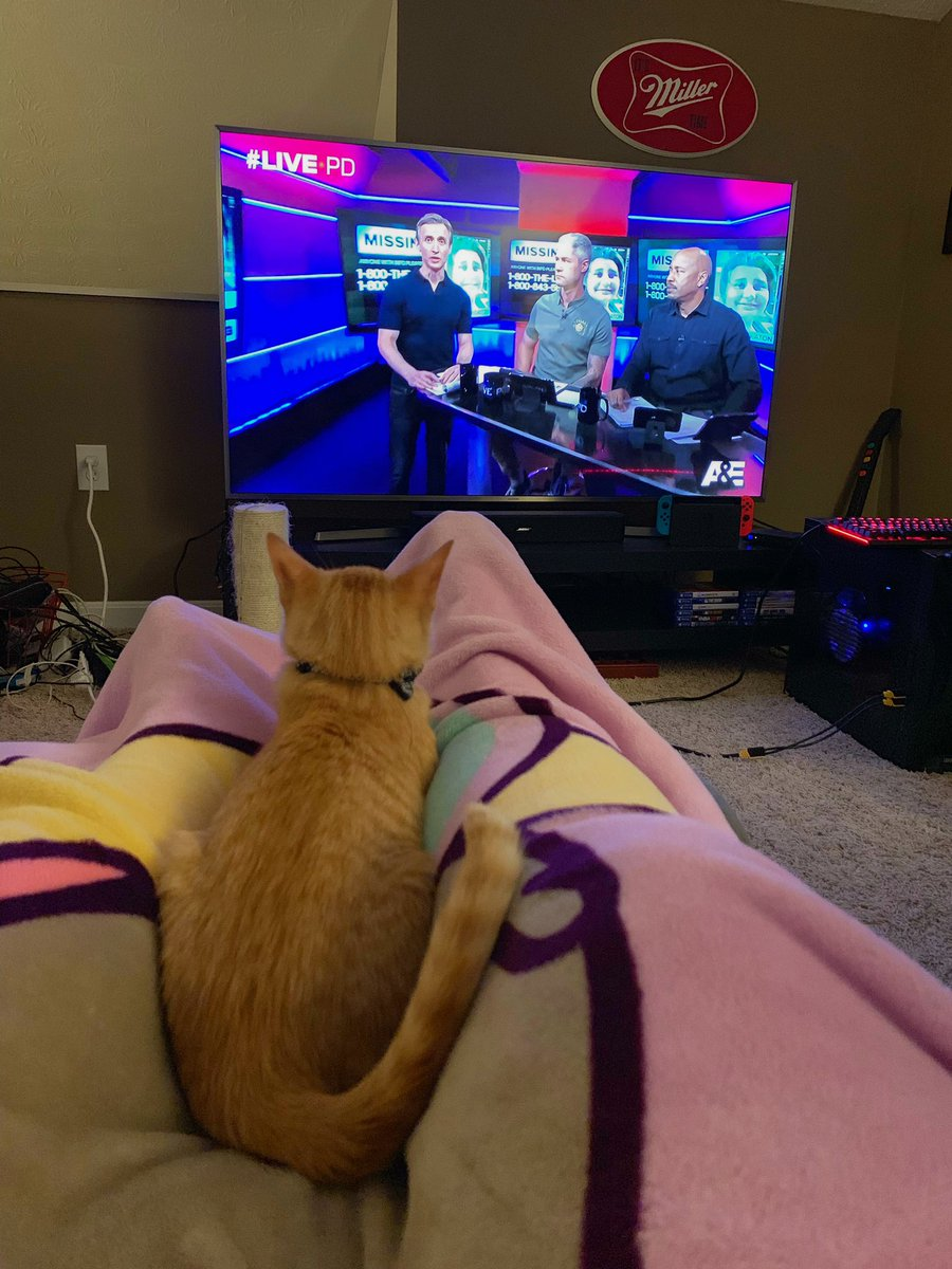 Frankie wants to be a pawficer when he grows up! 👮♂️#watchparty #LivePD #LivePDNation https://t.co/5teWJRDESd