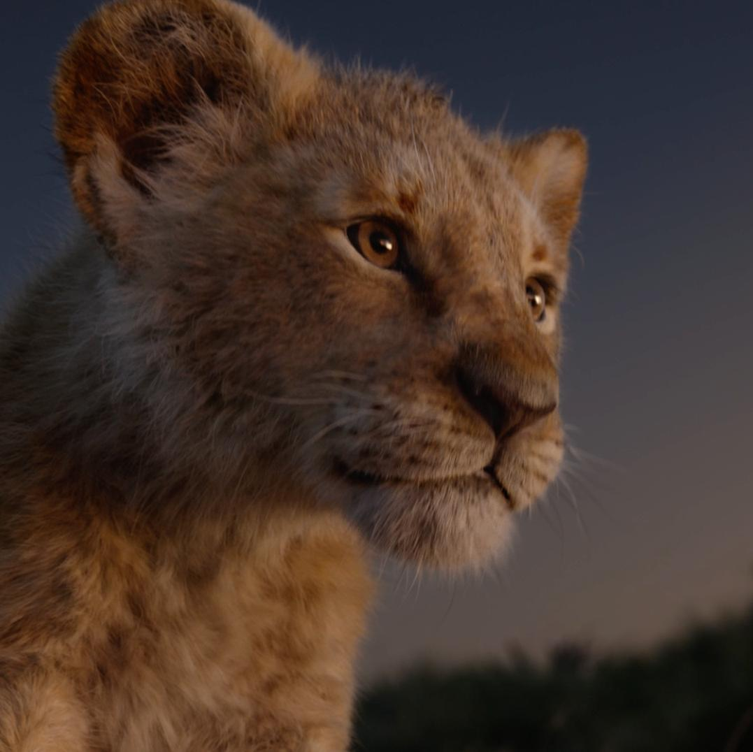 The Lion King roars. Experience the phenomenon in theatres now: bit.ly/LnKngTix #TheLionKing