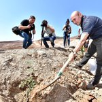 Image for the Tweet beginning: Çanakkale'deki doğa katliamına karşı yürütülen