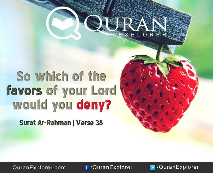 QuranExplorer - Quran Explorer Twitter Profile | Twitock