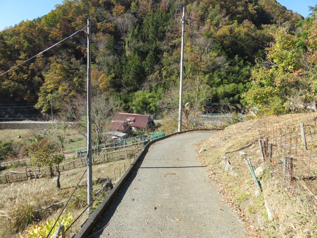 大山集落へ向かう道は県道脇から始まる。『この先に20軒近くの集落があるのか?』そう思わせるような細い道が伸びている。ただ、最初のうちは細い道だが、先に進むにつれて(それなりの)広い道に変わっていく。そして、約300mの標高差をヘアピンを繰り返しながら登っていく。