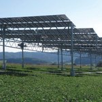 Image for the Tweet beginning: Installing solar panels on agricultural