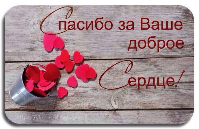 Ромашки смешные, открытка у тебя доброе сердце