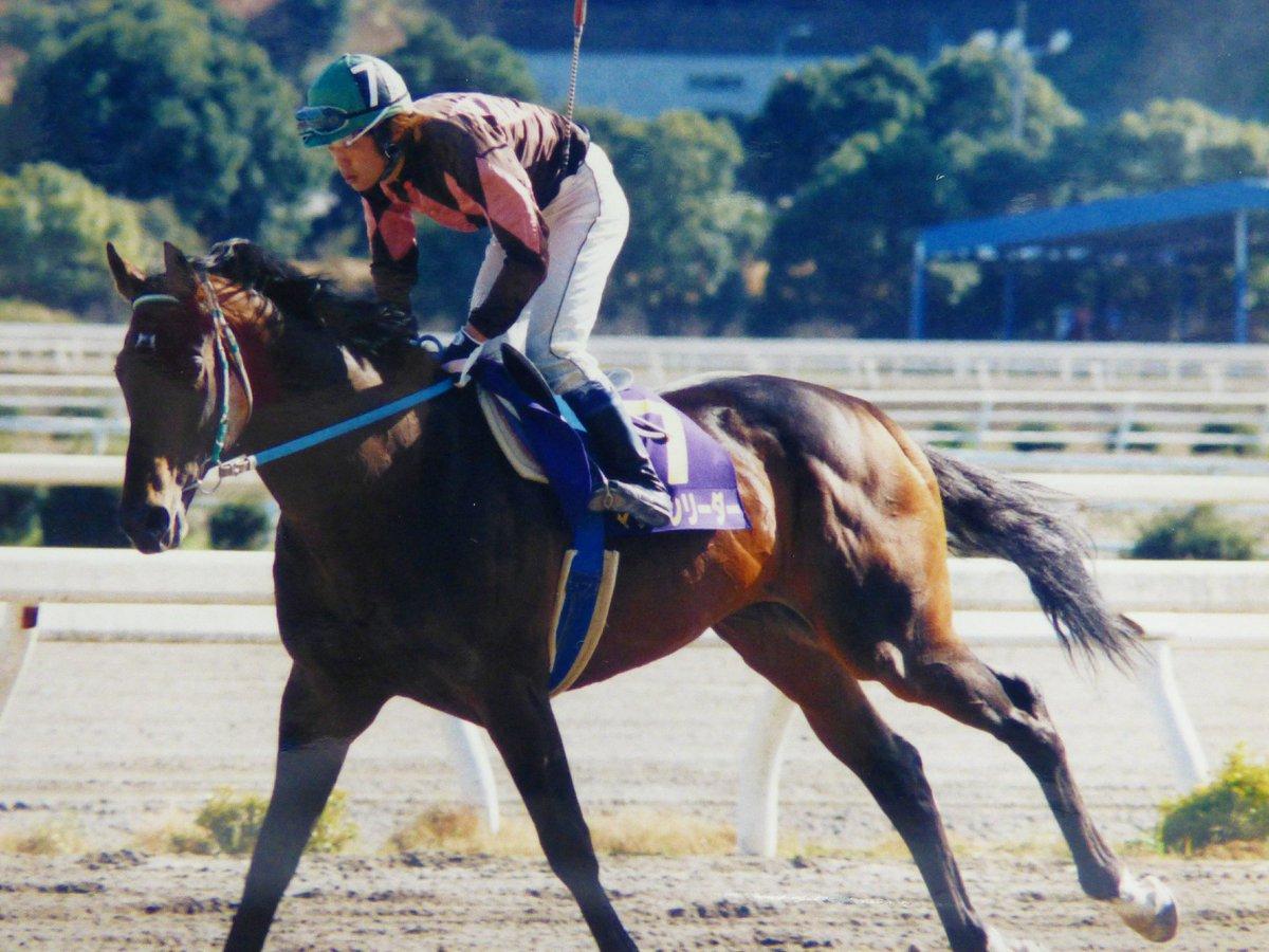 ~懐かしの高知名馬~  マッケンリーダーと明神繁正騎手。  (2003年3月撮影)  JRAオープンから高知に移籍したマッケンリーダー。  重賞勝ちは1999年の珊瑚冠賞だけですが重賞2着3着など入着がたくさんある安定した馬さんでした。  記録より記憶に残る名馬だったと思います。  #高知競馬 #名馬