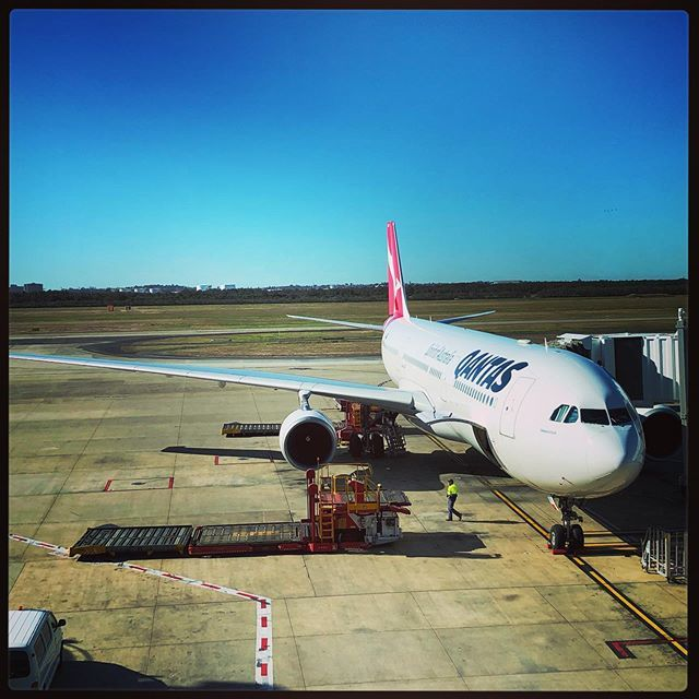 Qantas tagged Tweets, Videos and Images on Twitter | Twitock