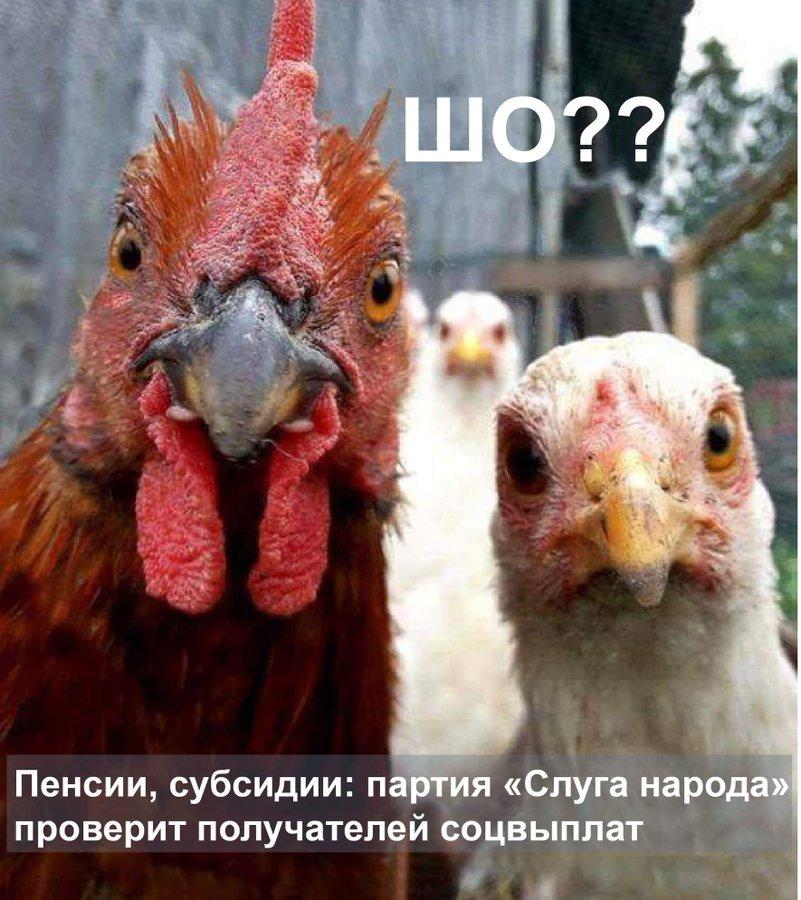 Якщо вдасться завершити децентралізацію швидше, то тягнути до строкових місцевих виборів немає сенсу, - Корнієнко - Цензор.НЕТ 9864