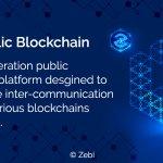 Image for the Tweet beginning: Zebi Public Blockchain - A