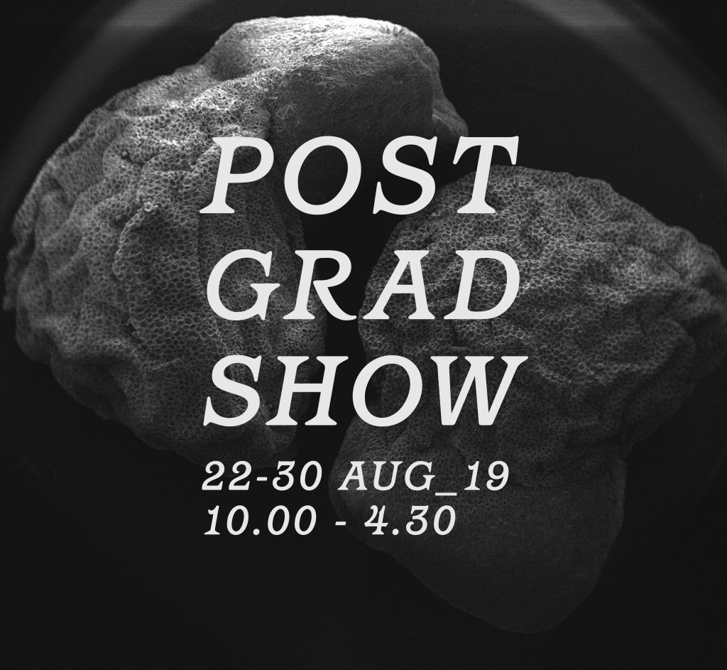 .@LJMUarts Postgraduate Degree Show, 22-30 August 2019, 10.00 - 4.30 excluding weekends & bank holidays. Featuring the work of students studying: Art in Science, Fashion Innovation & Realisation, Fine Art, Graphic Design & Illustration, MArch Architecture, Urban Design