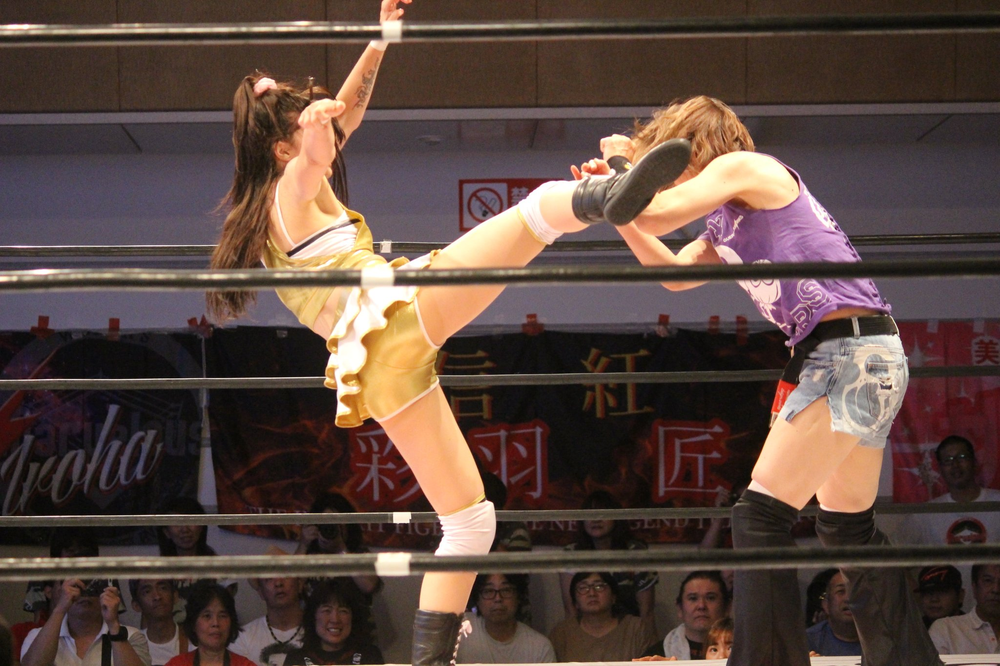 Official Japanese Wrestling Discussion Thread - Page 310