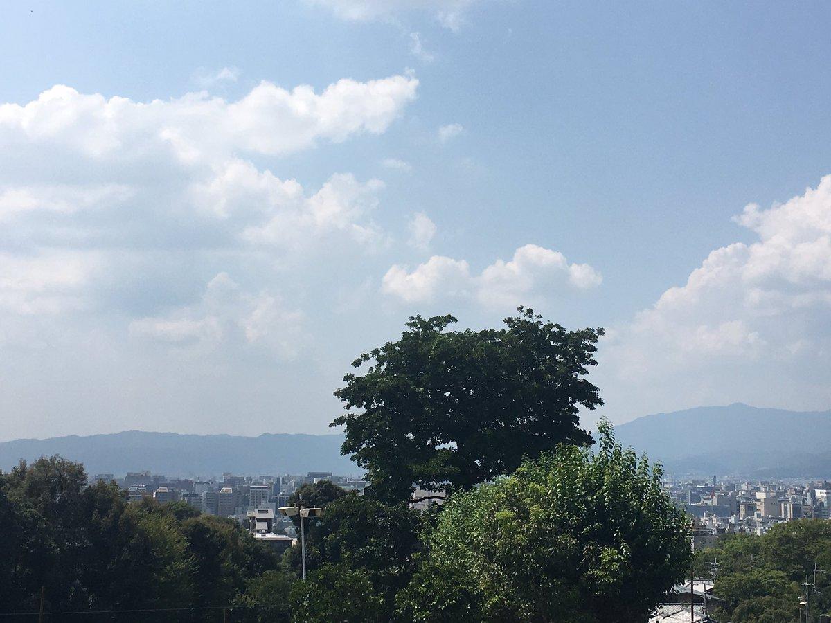 先日京都に行ったのは、日本画家、上村松園さんのお墓まいりに行ったのでした。久しぶりにご挨拶できました。今日は上村松園さんの命日です。写真は、お墓から眺める街並み。帰りには京都の美味しいものを。#青眉のひと