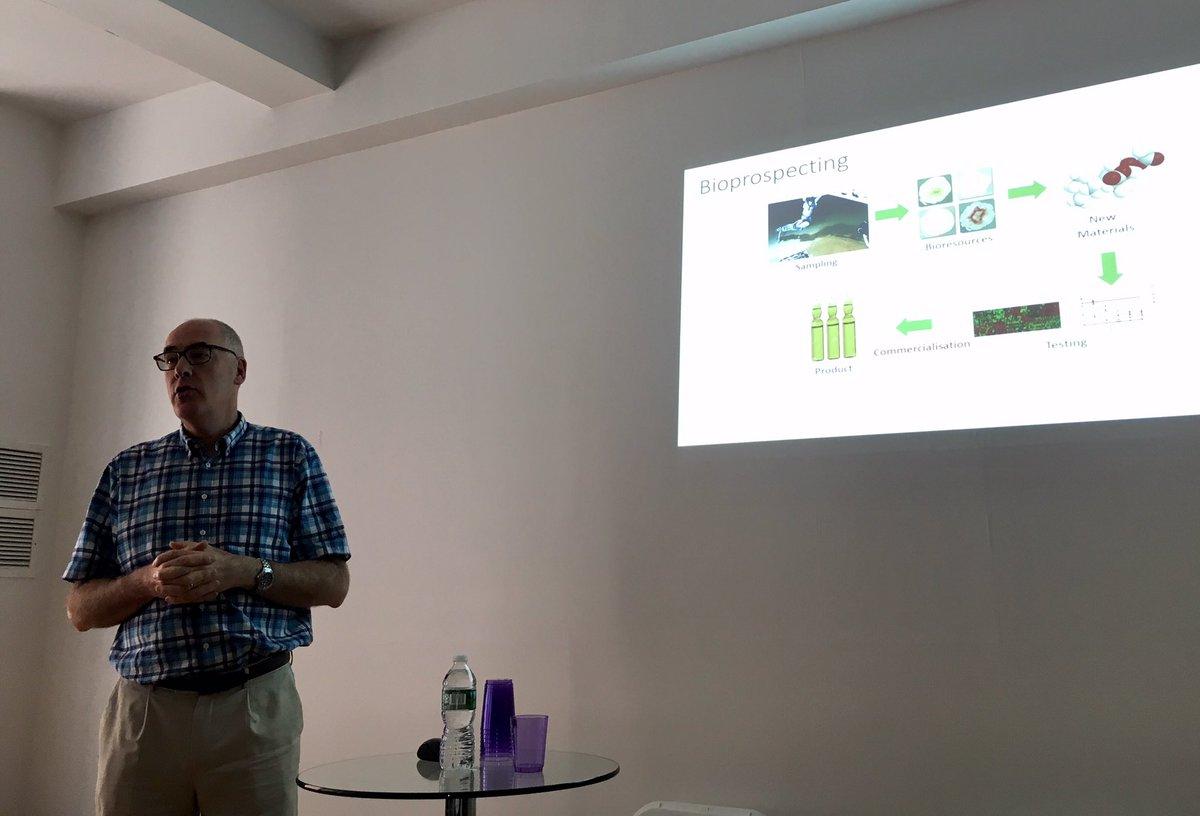 DCE — Das OSF Distributed Computing Environment: Einführung und Grundlagen