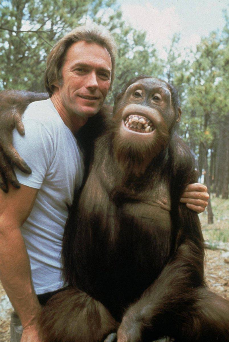 Clint Eastwood #actorslife #actors #Hollywood https://t.co/DcsKRijc1J