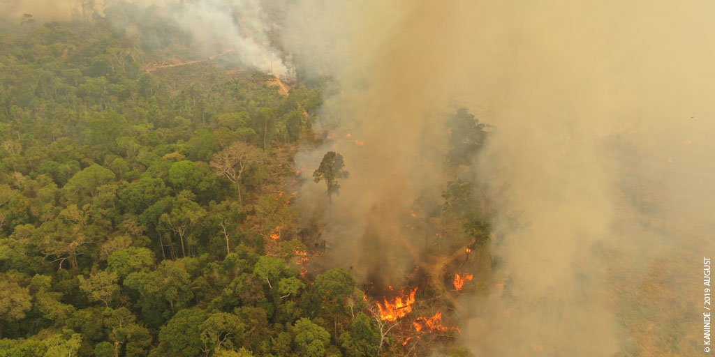 Brazil deploys troops, military aircraft to fight Amazon fires