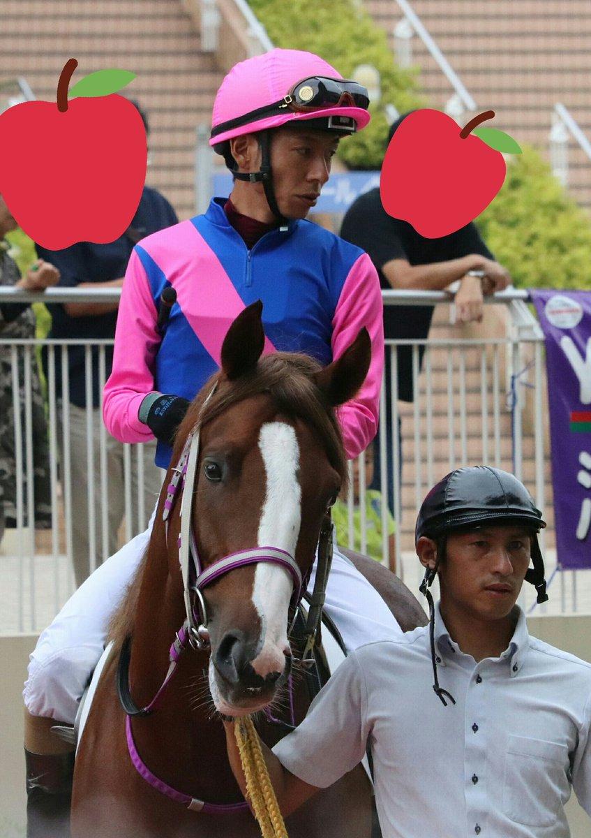 和田竜二騎手ご贔屓の方へ届けば嬉しい写真です。  🐴メイショウケアラシ 📷2019.8.24小倉5R(2歳新馬)