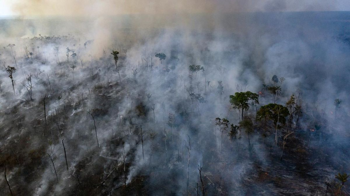 Macron and Trudeau pile pressure on Brazil to douse Amazon rain forest flames – and it may be working  http:// dlvr.it/RBsjhb      @GlobePolitics<br>http://pic.twitter.com/92JXFBWNR3