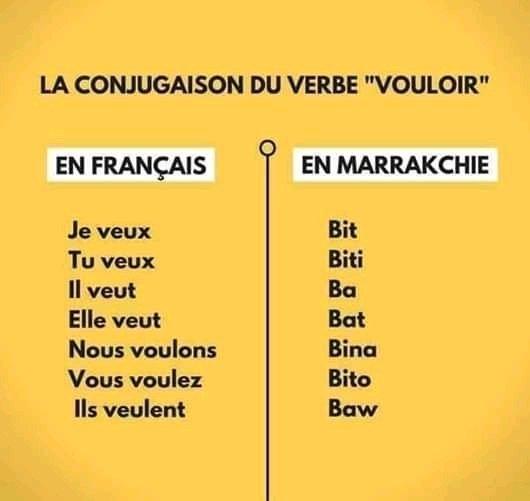 Mohamed Amgoun On Twitter Apprendre La Langue Marakchi Conjugaison De Verbe Vouloir B