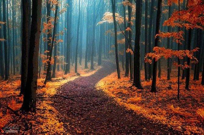 Главное правило реальности - не запутаться в своих иллюзиях...💖