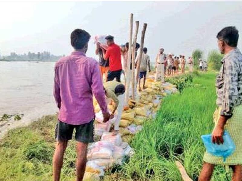 Pakistan floods Satluj with dirty water, Ferozepur embankment damaged Read: toi.in/ztO_lZ/a24gk