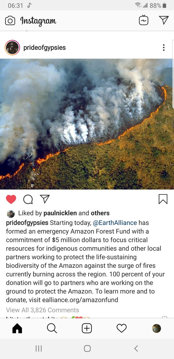 I love that Jason Momoa also supports and cares about our rainforest #AmazonFires #amazonrainforestfire #ActForTheAmazon #ActForAmazonia https://t.co/3Bhzn98lFv