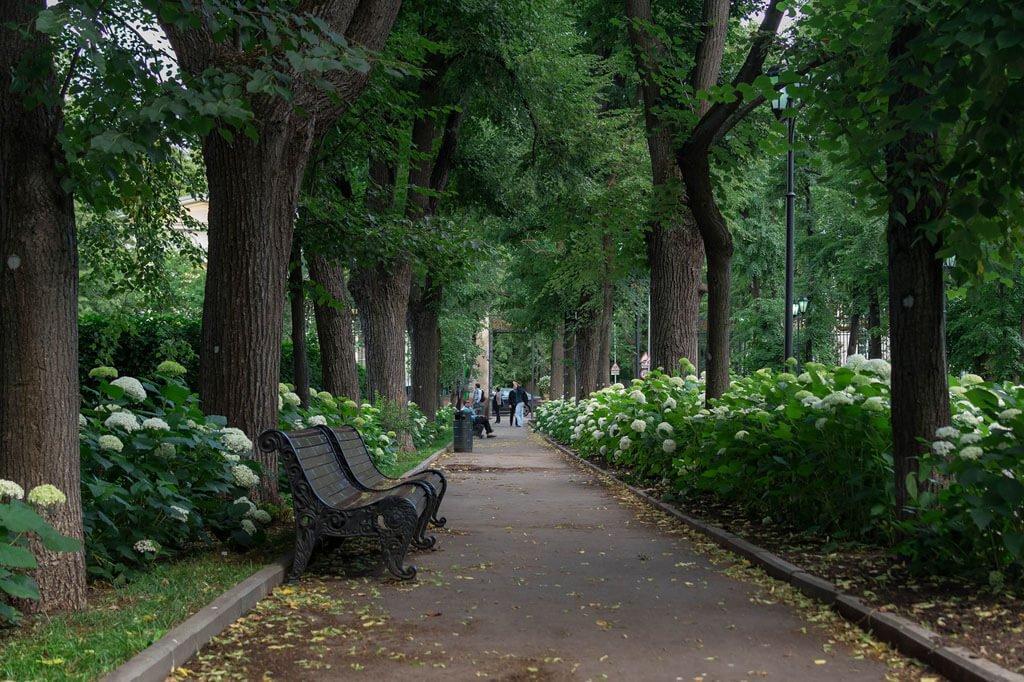 вас самые красивые парки в москве для фотосессий съемка происходит студии