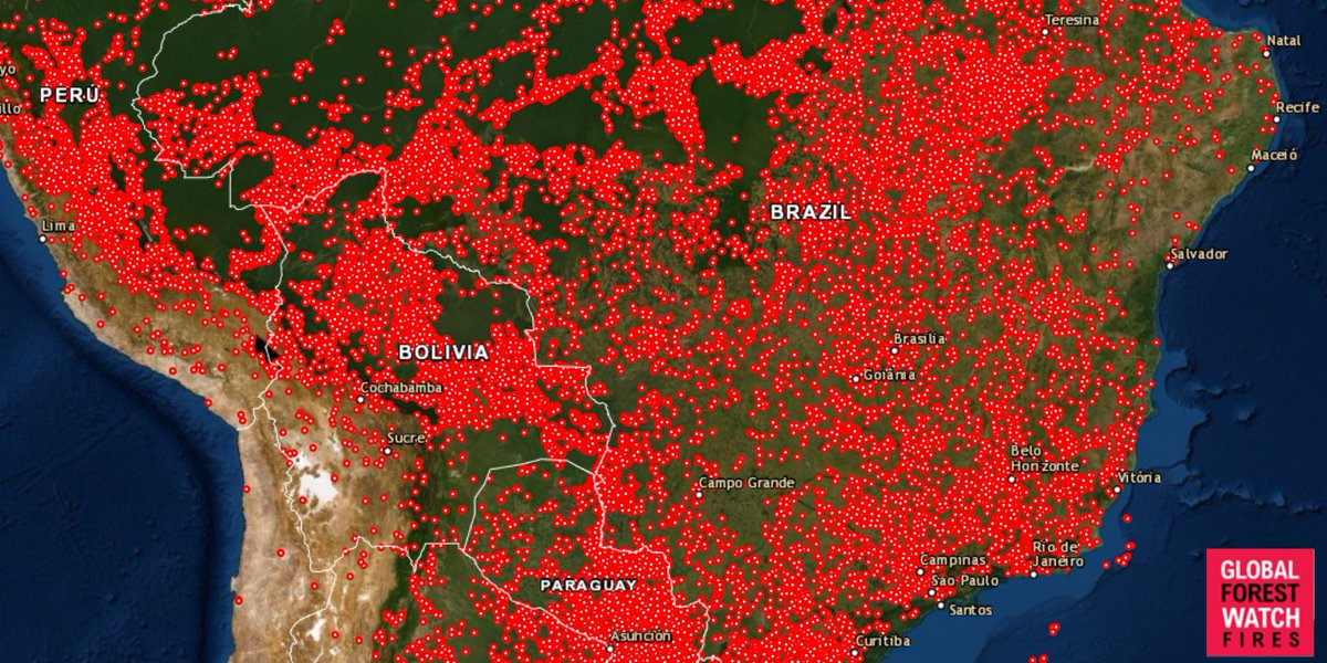 Brazil has seen 100,000 fire alerts in 10 days, but it's not just the Amazon — one map shows how much of South America is burning:  http:// ow.ly/S3ab50vJubc     via @SciInsider @globalforests #PrayForAmazonas #AmazonFires<br>http://pic.twitter.com/k6S9j2Om5P