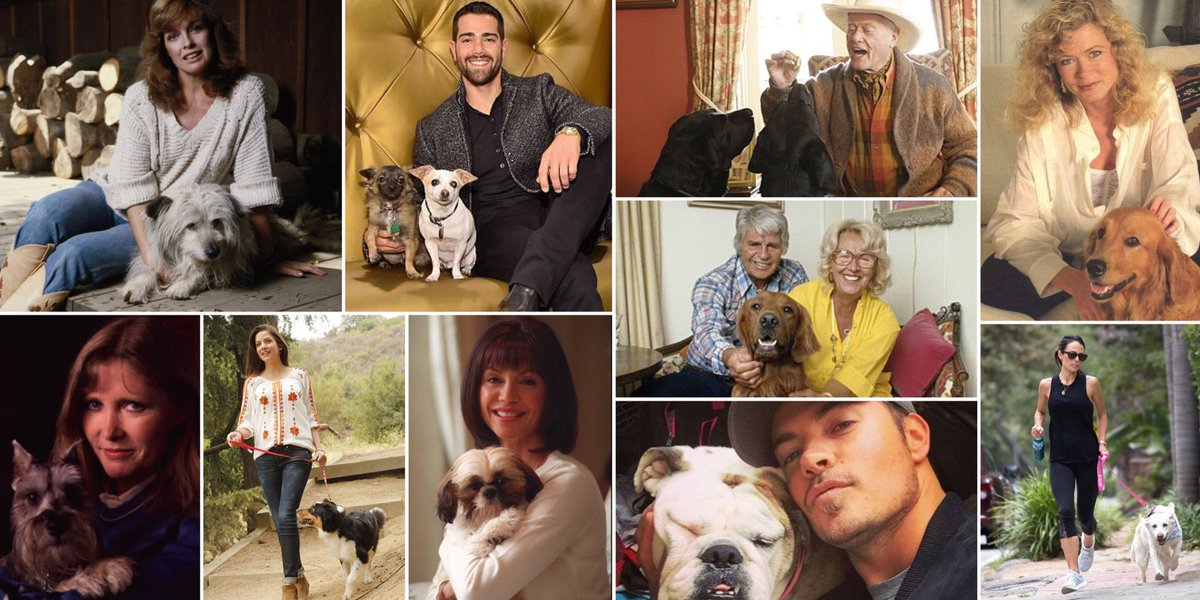 RT @DefinitiveDAL: It is #nationaldogday! #Dallas stars and their canine companions through the years! https://t.co/oocGZf0v8j
