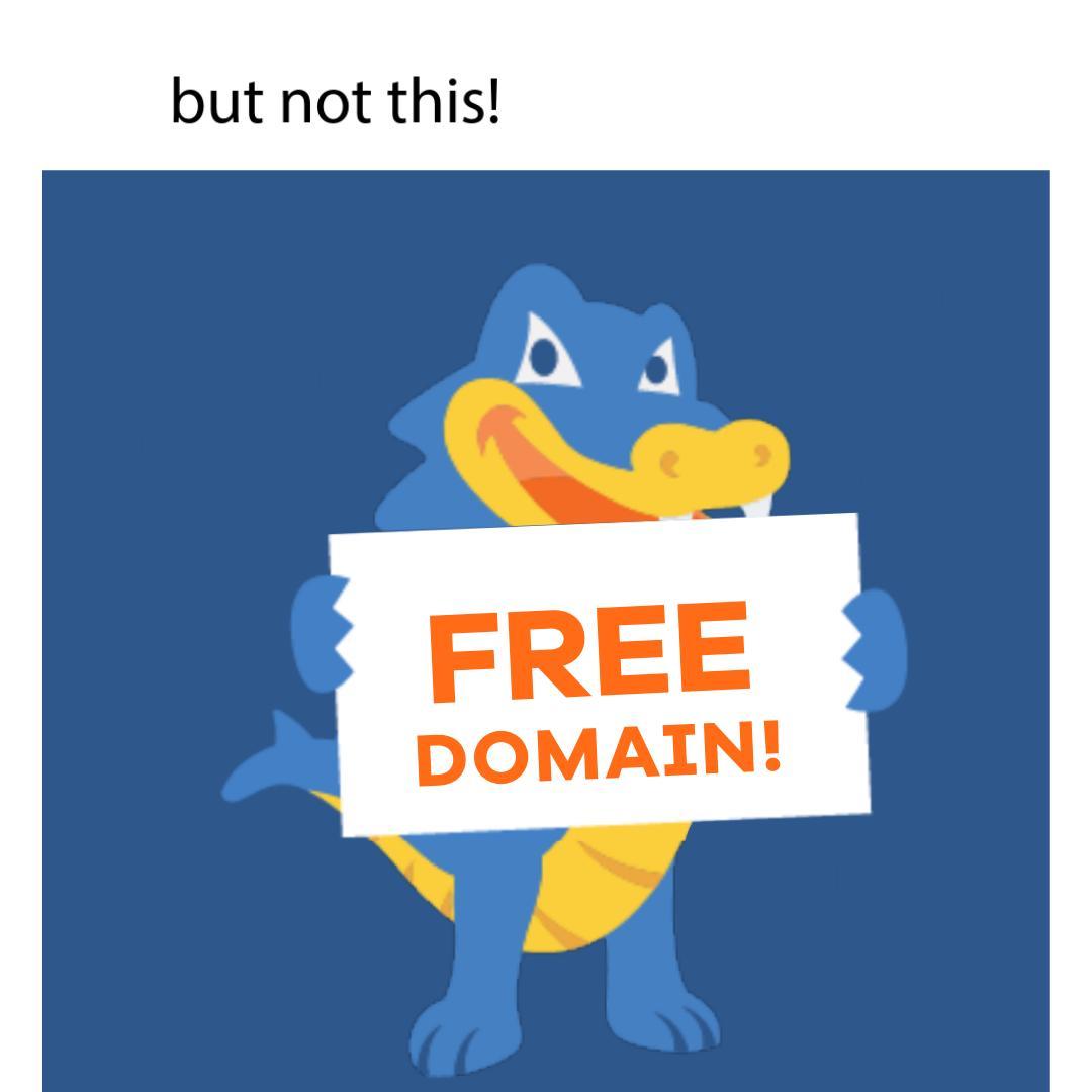 Hostgator Web Hosting free domain