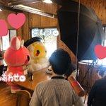 fripper_taroのサムネイル画像