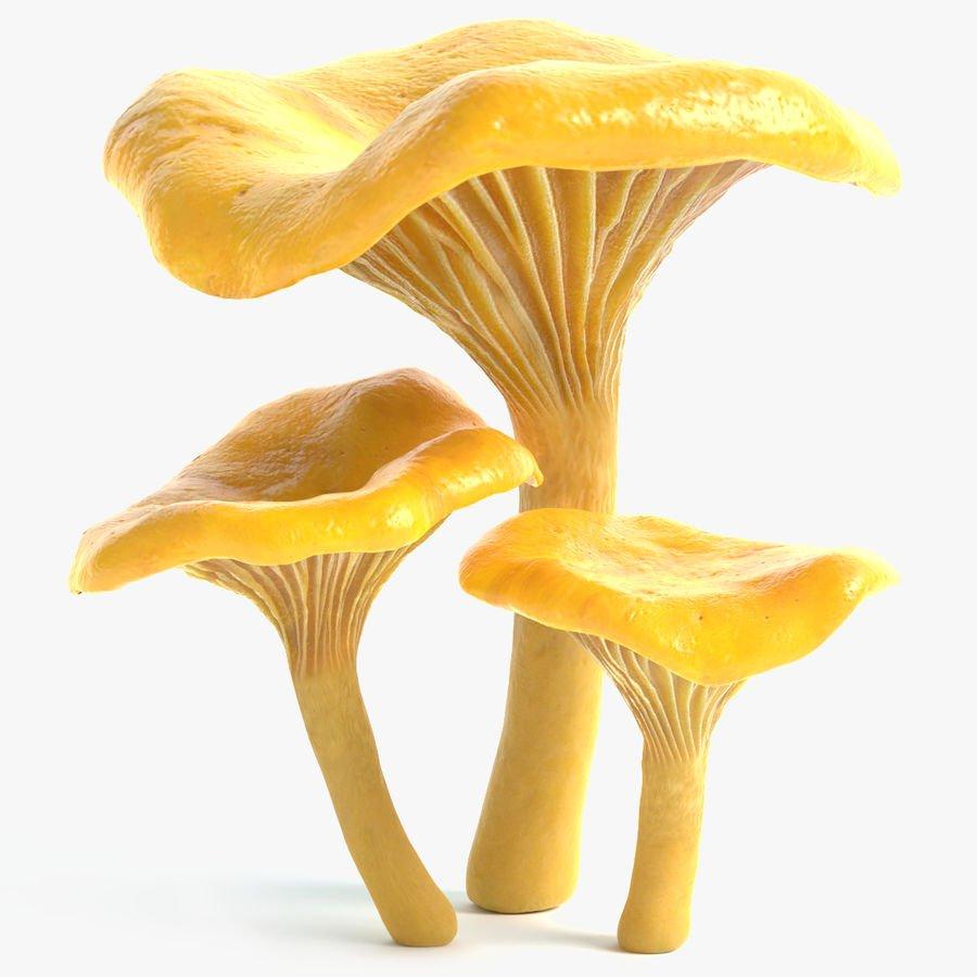 Для, картинка гриб лисичка анимация
