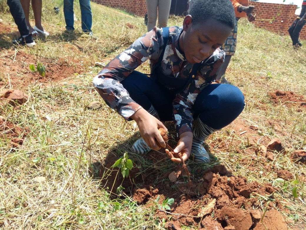 #LeahBirthdayTrees is underway. Friends and family have joined. Its not too late for you to join. Yes I preferred to plant 200 trees to a birthday party. @350 @Greenpeace @SwedeninUG @kuminaidoo @GretaThunberg @Fridays4future