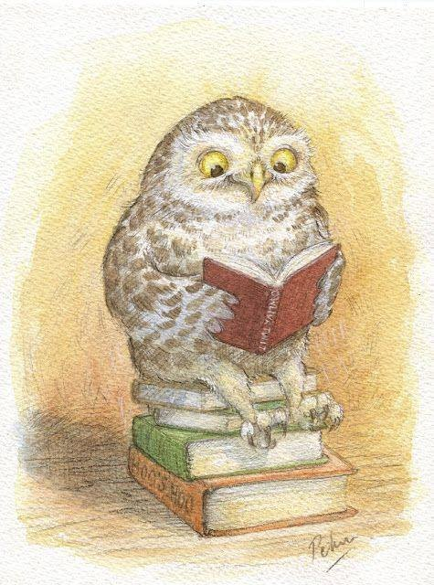 "The origin of the idiom ""bookworm"" was a derogatory term for a person who studied or read more than was usual. Bugs such as silverfish, book lice, & linoleum beetles were referred to as bookworms because they inhabited books. Therefore I will only respond to book owl now!"