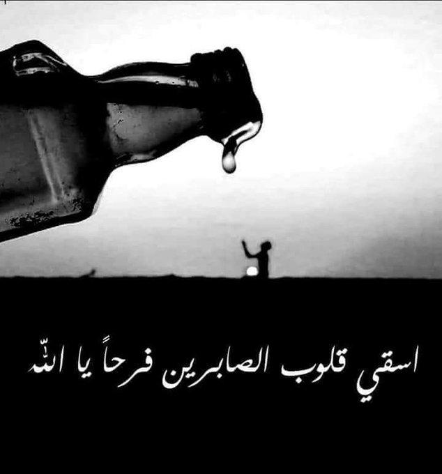 #صالح_المغامسي صورة فوتوغرافية