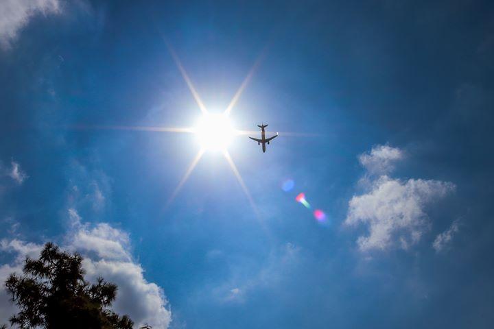 Tampa Intl Airport ✈️