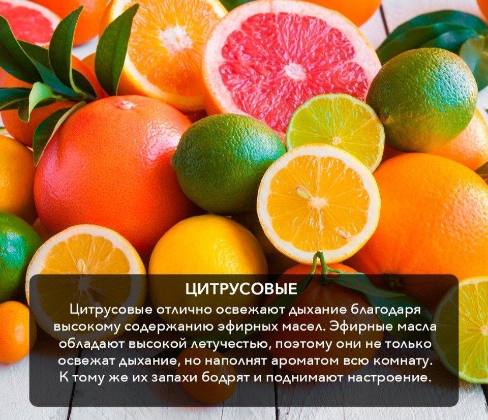 Какие Фрукты Кушать При Диете. Какие фрукты можно есть для снижения веса.Какие фрукты лучше есть чтобы похудеть!