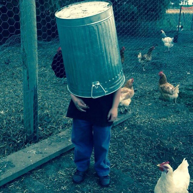 Hiding from your feelings is a bit like putting an empty bin over your head and thinking you're invisible. The chickens can still see you, but now you're in the dark and stuck. How is that working for you? #feelthefeels
